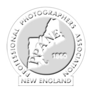 PPANE logo